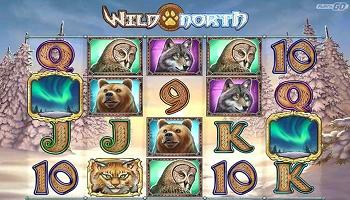 Wild North, Freispiele, Bonus, Gratis